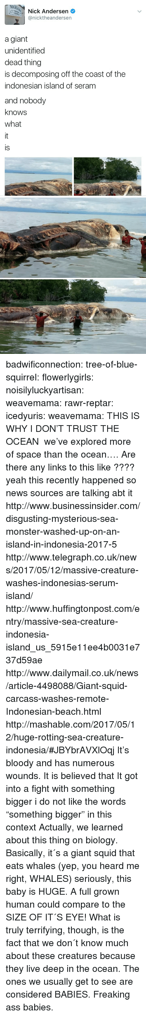 "Indonesian: NIC  Nick Andersen  @nicktheandersen  a giant  unidentified  dead thing  is decomposing off the coast of the  indonesian island of seram  and nobody  knows  what  is badwificonnection:  tree-of-blue-squirrel:   flowerlygirls:  noisilyluckyartisan:   weavemama:   rawr-reptar:  icedyuris:   weavemama: THIS IS WHY I DON'T TRUST THE OCEAN  we've explored more of space than the ocean….   Are there any links to this like ????  yeah this recently happened so news sources are talking abt it http://www.businessinsider.com/disgusting-mysterious-sea-monster-washed-up-on-an-island-in-indonesia-2017-5 http://www.telegraph.co.uk/news/2017/05/12/massive-creature-washes-indonesias-serum-island/ http://www.huffingtonpost.com/entry/massive-sea-creature-indonesia-island_us_5915e11ee4b0031e737d59ae http://www.dailymail.co.uk/news/article-4498088/Giant-squid-carcass-washes-remote-Indonesian-beach.html http://mashable.com/2017/05/12/huge-rotting-sea-creature-indonesia/#JBYbrAVXlOqj   It's bloody and has numerous wounds. It is believed that It got into a fight with something bigger   i do not like the words ""something bigger"" in this context  Actually, we learned about this thing on biology. Basically, it´s a giant squid that eats whales (yep, you heard me right, WHALES) seriously, this baby is HUGE. A full grown human could compare to the SIZE OF IT´S EYE! What is truly terrifying, though, is the fact that we don´t know much about these creatures because they live deep in the ocean. The ones we usually get to see are considered BABIES. Freaking ass babies."