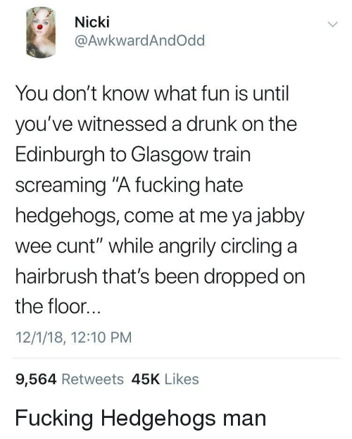 """come at me: Nicki  @AwkwardAndOdd  You don't know what fun is until  you've witnessed a drunk on the  Edinburgh to Glasgow train  screaming """"A fucking hate  hedgehogs, come at me ya jabby  wee cunt"""" while angrily circling a  hairbrush that's been dropped on  the floor...  12/1/18, 12:10 PM  9,564 Retweets 45K Likes Fucking Hedgehogs man"""