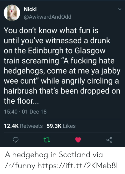 """come at me: Nicki  @AwkwardAndOdd  You don't know what fun is  until you've witnessed a drunk  on the Edinburgh to Glasgow  train screaming """"A fucking hate  hedgehogs, come at me ya jabby  wee cunt"""" while angrily circling a  hairbrush that's been dropped on  the floor  15:40 01 Dec 18  12.4K Retweets 59.3K Likes A hedgehog in Scotland via /r/funny https://ift.tt/2KMeb8L"""
