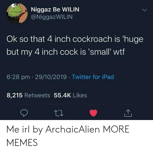 Dank, Ipad, and Memes: Niggaz Be WILIN  @NiggazWILIN  Ok so that 4 inch cockroach is 'huge  but my 4 inch cock is 'small' wtf  6:28 pm 29/10/2019 Twitter for iPad  8,215 Retweets 55.4K Likes Me irl by ArchaicAlien MORE MEMES