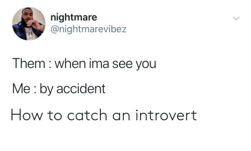 an introvert: nightmare  @nightmarevibez  Them when ima see you  Me by accident How to catch an introvert