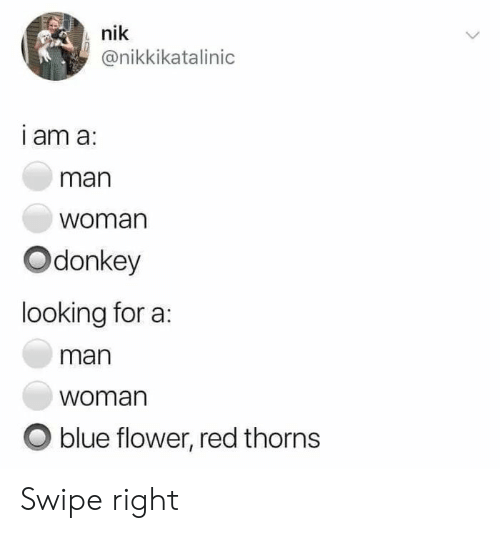 Blue, Flower, and Red: nik  @nikkikatalinic  I am a:  man  woman  Odonkey  looking for a  man  woman  O blue flower, red thorns Swipe right