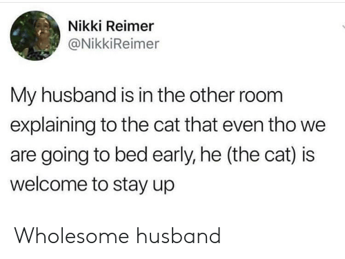 Husband, Wholesome, and Cat: Nikki Reimer  @NikkiReimer  My husband is in the other room  explaining to the cat that even tho we  are going to bed early, he (the cat) is  welcome to stay up Wholesome husband