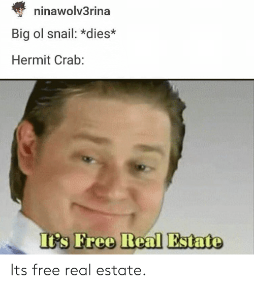 Free, Real Estate, and Big: ninawolv3rina  Big ol snail: *dies*  Hermit Crab:  Its Free Real Estate Its free real estate.