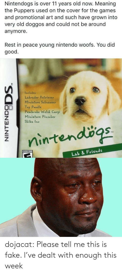 Young: Nintendogs is over 11 years old now. Meaning  the Puppers used on the cover for the games  and promotional art and such have grown into  very old doggos and could not be around  anymore.  Rest in peace young nintendo woofs. You did  good.  Includes:  Labrador Retriever  Miniature SchnAuzer  Toy Poodle  Pembroke Welsh Corgi  Miniature Pinscher  Skiba Inu  nintendögs.  EVERYONE  Lab & Friends  NINTENDO  DODS. dojacat:  Please tell me this is fake. I've dealt with enough this week