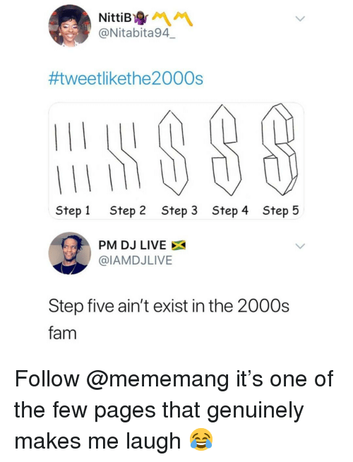 Fam, Memes, and Live: NittiB  @Nitabita94  #tweetlikethe2000s  Step 1  Step 2  Step 3  Step 4  Step 5  PM DJ LIVE  @IAMDJLIVE  Step five ain't exist in the 2000s  fam Follow @mememang it's one of the few pages that genuinely makes me laugh 😂