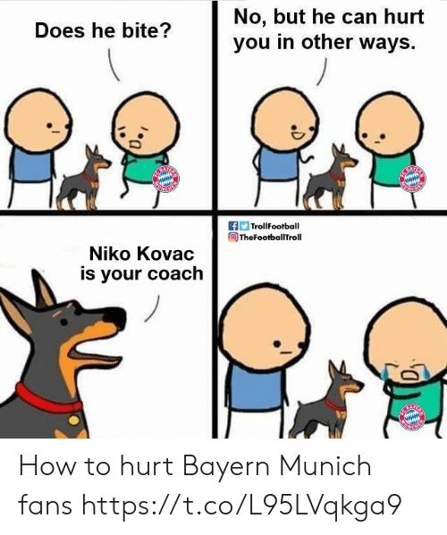 Trollfootball: No, but he can hurt  you in other ways  Does he bite?  f TrollFootball  TheFootballTroll  Niko Kovac  is your coach How to hurt Bayern Munich fans https://t.co/L95LVqkga9