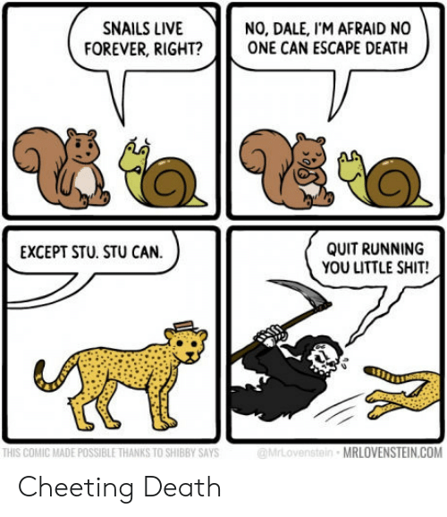 Escape Death: NO, DALE, I'M AFRAID NO  FOREVER, RIGHT?ONE CAN ESCAPE DEATH  SNAILS LIVE  QUIT RUNNING  YOU LITTLE SHIT!  EXCEPT STU. STU CAN.  чё  THIS COMIC MADE POSSIBLE THANKS TO SHIBBY SAYS  MRLOVENSTEIN.COM Cheeting Death