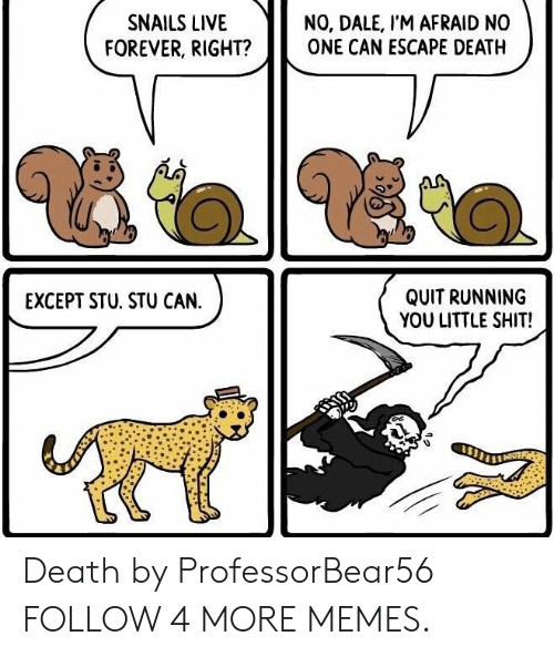 Escape Death: NO, DALE, I'M AFRAID NO  ONE CAN ESCAPE DEATH  SNAILS LIVE  FOREVER, RIGHT?  QUIT RUNNING  YOU LITTLE SHIT!  EXCEPT STU. STU CAN. Death by ProfessorBear56 FOLLOW 4 MORE MEMES.