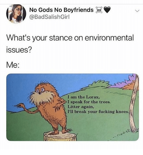 Fucking, Break, and Trees: No Gods No Boyfriends  @BadSalishGirl  What's your stance on environmental  ssues?  Me:  I am the Lorax,  I speak for the trees.  Litter again,  I'll break your fucking knees.
