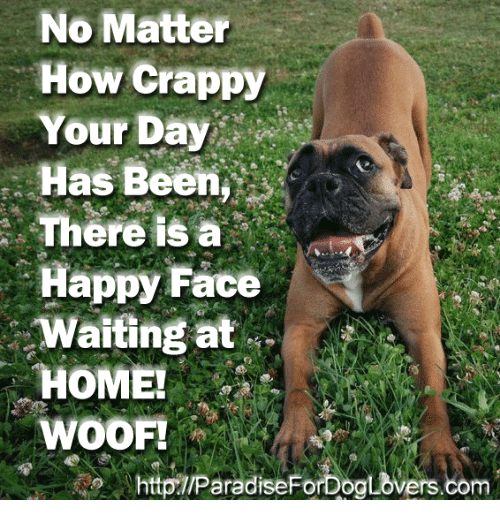 Memes, 🤖, and Face: No Matter  How Crappy  Your Day  Has Been  There IS a  Happy Face  Waiting at  HOME!  WOOF!  httpTIParadiseForDoaLovers.com