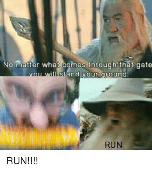 Funny, Run, and Gate: No matter what comes through that gate  and your ground  RUN
