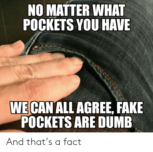 pockets: NO MATTER WHAT  POCKETS YOU HAVE  WE CAN ALL AGREE, FAKE  POCKETS ARE DUMB And that's a fact
