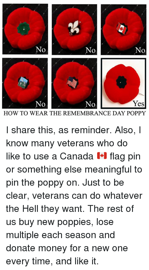 Wear The Remembrance Day Poppy