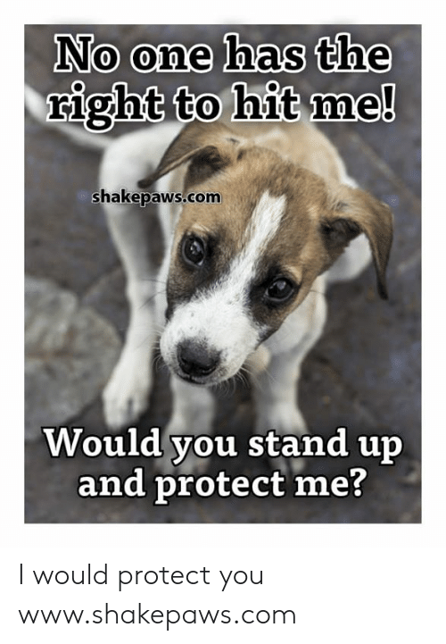 Protect Me: No one has the  right to hit me!  shakepaws.com  Would you stand up  and protect me? I would protect you www.shakepaws.com