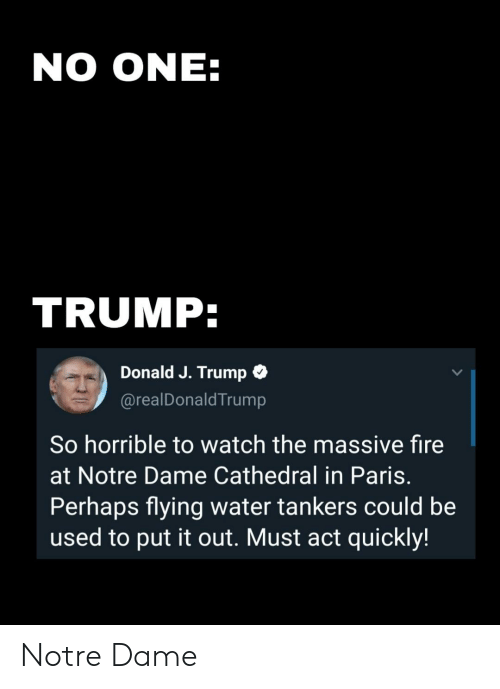 Fire, Funny, and Notre Dame: NO ONE:  TRUMP:  Donald J. Trump  @realDonaldTrump  So horrible to watch the massive fire  at Notre Dame Cathedral in Paris.  Perhaps flying water tankers could be  used to put it out. Must act quickly! Notre Dame