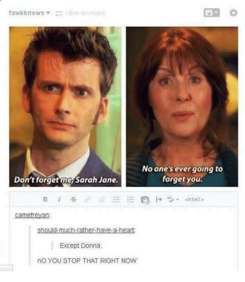 You Stop That: No one's ever going to  forget you  Don't forget meSarah Jane.  camefreyan  Except Donna  no you STOP THAT RIGHT NOW