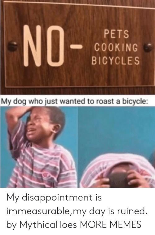 roast: NO-  PETS  COOKING  BICYCLES  My dog who just wanted to roast a bicycle My disappointment is immeasurable,my day is ruined. by MythicalToes MORE MEMES