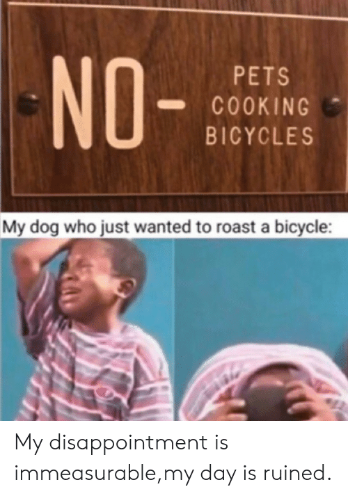 roast: NO-  PETS  COOKING  BICYCLES  My dog who just wanted to roast a bicycle My disappointment is immeasurable,my day is ruined.