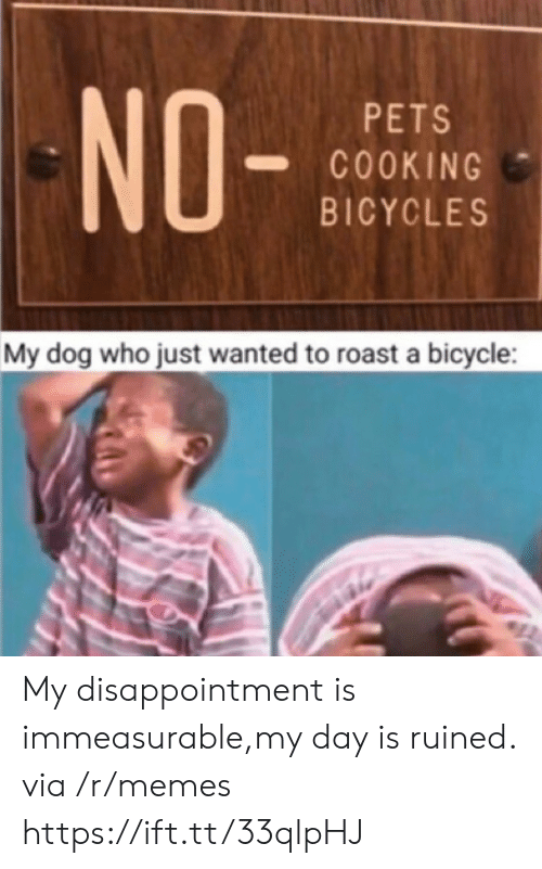 roast: NO-  PETS  COOKING  BICYCLES  My dog who just wanted to roast a bicycle My disappointment is immeasurable,my day is ruined. via /r/memes https://ift.tt/33qlpHJ