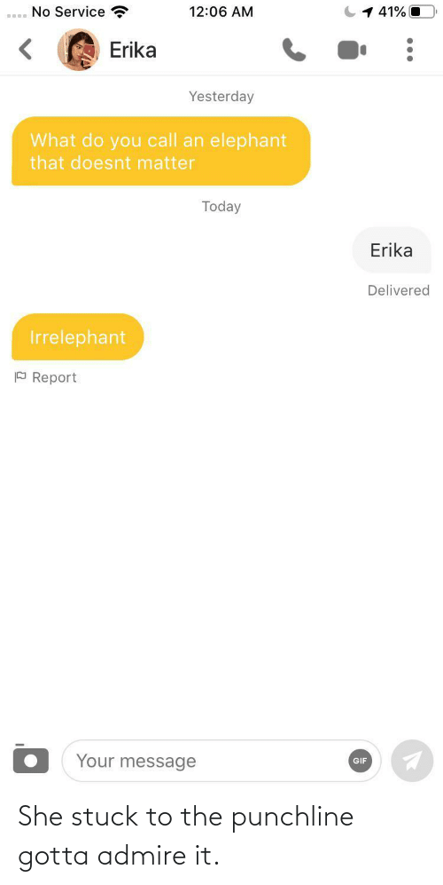 Gif, Elephant, and Today: No Service  1 41% O  12:06 AM  Erika  Yesterday  What do you call an elephant  that doesnt matter  Today  Erika  Delivered  Irrelephant  P Report  Your message  GIF She stuck to the punchline gotta admire it.