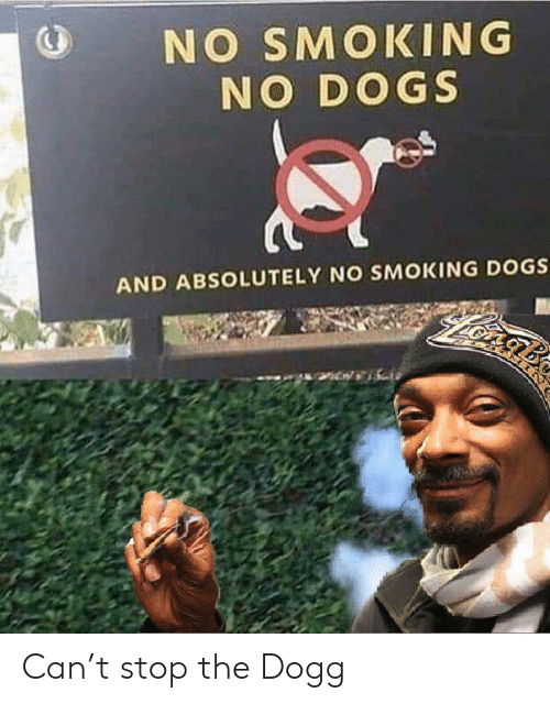 Stop The: NO SMOKING  NO DOGS  AND ABSOLUTELY NO SMOKING DOGS Can't stop the Dogg