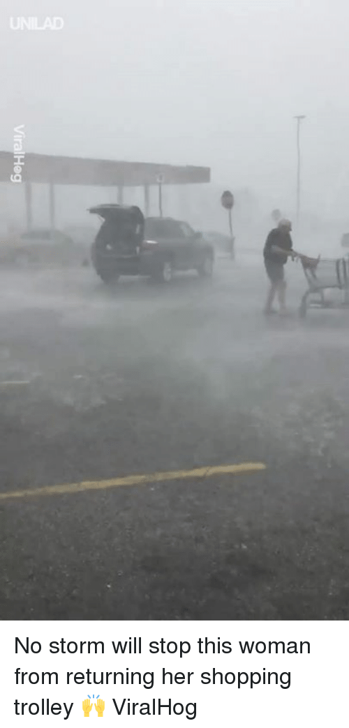 Trolley: No storm will stop this woman from returning her shopping trolley 🙌  ViralHog