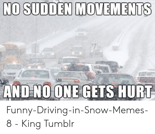 Driving, Funny, and Memes: NO SUDDEN MOVEMENTS  ANDNOONE GETS HURT Funny-Driving-in-Snow-Memes-8 - King Tumblr