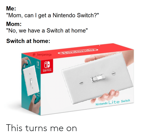 """Can I Get A: """"No, we have a Switch at home""""  SWTCK  Nintendo Lite Switch  @_benjaninja  SWITCH  """"Mom, can I get a Nintendo Switch?""""  Me:  Mom:  ENDO  Switch at home: This turns me on"""