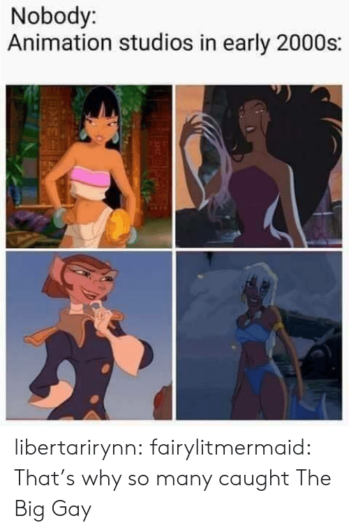 Target, Tumblr, and Blog: Nobody:  Animation studios in early 2000s: libertarirynn: fairylitmermaid:    That's why so many caught The Big Gay