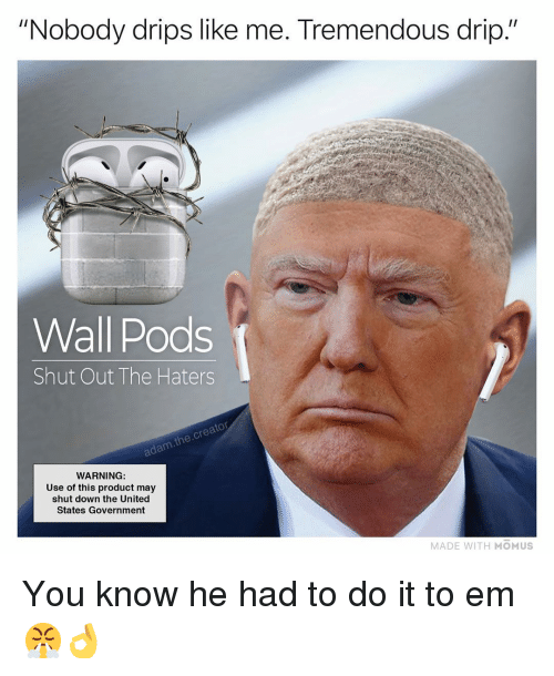 """Adam The Creator: """"Nobody drips like me. Tremendous drip.""""  Wall Pods  Shut Out The Haters  adam.the.creator  WARNING  Use of this product may  shut down the United  States Government  MADE WITH MOMUS You know he had to do it to em 😤👌"""