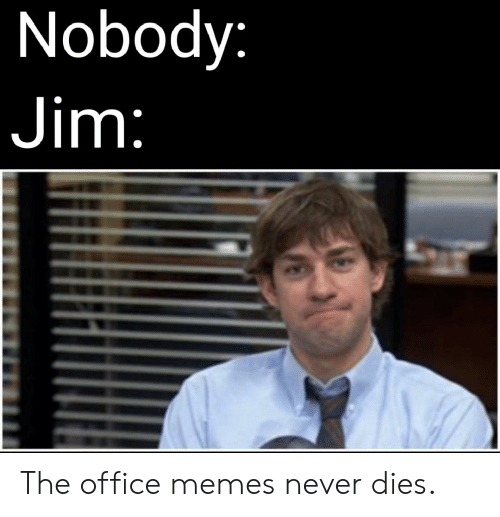 🅱️ 25+ Best Memes About the Office Memes | the Office Memes
