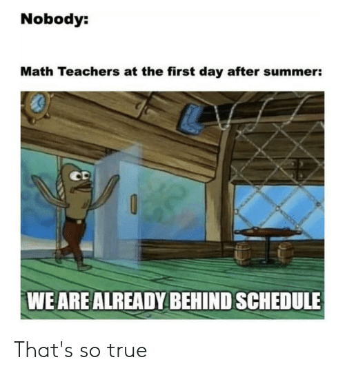 SpongeBob, True, and Summer: Nobody:  Math Teachers at the first day after summer:  CD  WE ARE ALREADY BEHIND SCHEDULE That's so true