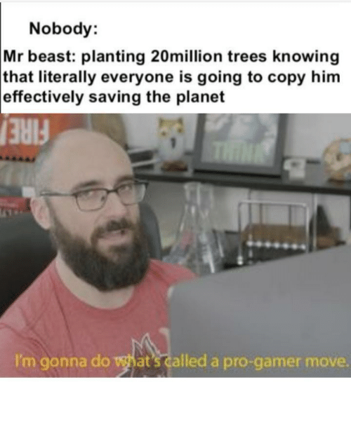 thin: Nobody:  Mr beast: planting 20million trees knowing  that literally everyone is going to copy him  effectively saving the planet  THIN  FIRE  I'm gonna do what's called a pro-gamer move. Such pro gamers