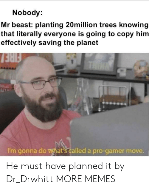 thin: Nobody:  Mr beast: planting 20million trees knowing  that literally everyone is going to copy him  effectively saving the planet  FIRE  THIN  I'm gonna do what's called a pro-gamer move. He must have planned it by Dr_Drwhitt MORE MEMES