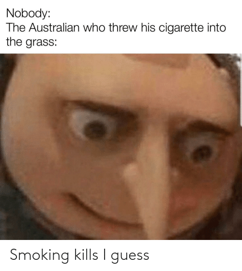 Australian: Nobody:  The Australian who threw his cigarette into  the grass:  %2 Smoking kills I guess
