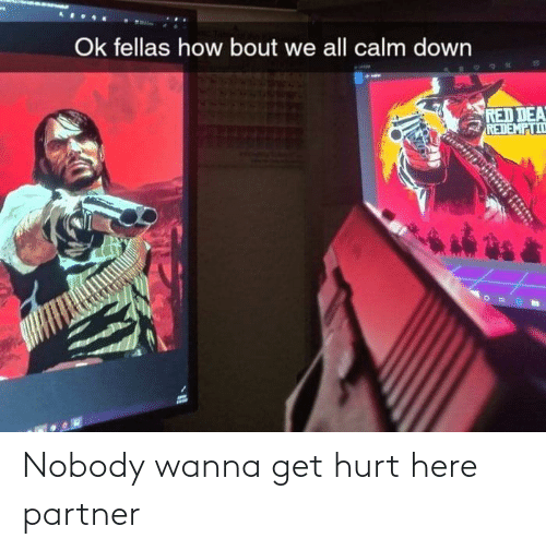 Partner: Nobody wanna get hurt here partner