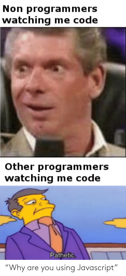"Why Are: Non programmers  watching me code  Other programmers  watching me code  Pathetic, ""Why are you using Javascript"""