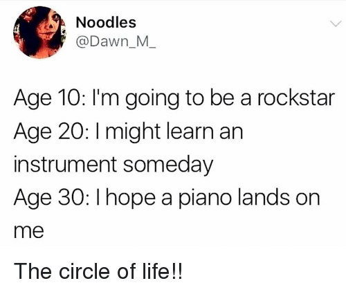 Life, Memes, and Dawn: Noodles  @Dawn_M  Age 10: l'm going to be a rockstar  Age 20: I might learn an  instrument someday  Age 30: I hope a piano lands orn  me The circle of life!!