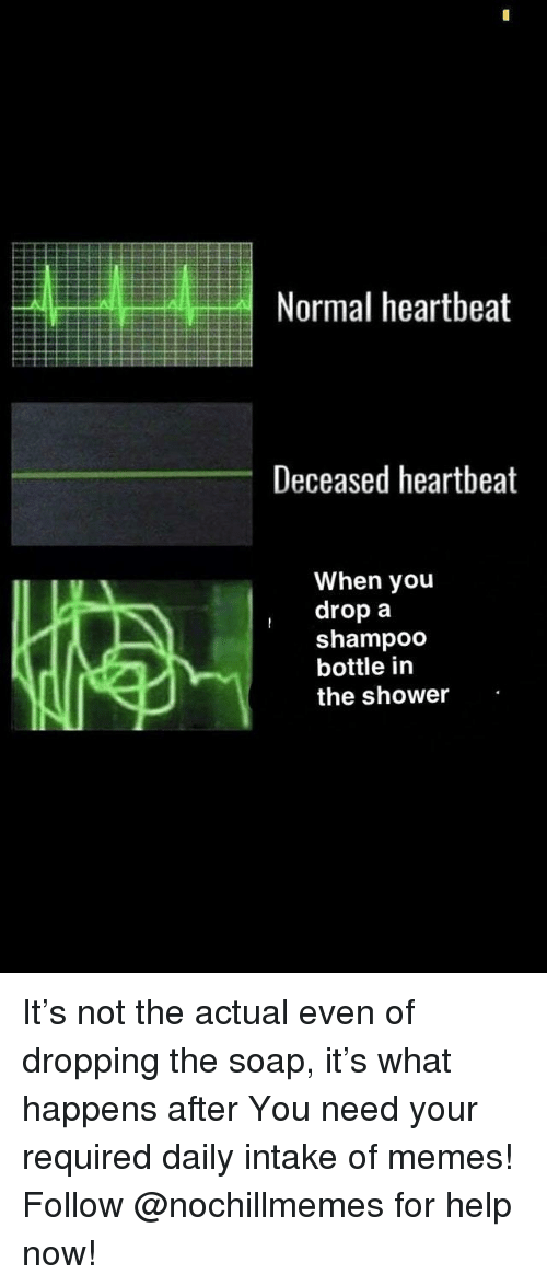 Memes, Shower, and Help: Normal heartbeat  Deceased heartbeat  When you  drop a  shampoco  bottle in  the shower It's not the actual even of dropping the soap, it's what happens after You need your required daily intake of memes! Follow @nochillmemes for help now!