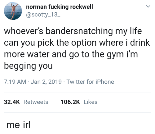 Drink More Water: norman fucking rockwell  @scotty 13  SC  whoever's bandersnatching my life  can you pick the option where i drink  more water and go to the gym i'm  begging you  7:19 AM-Jan 2, 2019 Twitter for iPhone  32.4KRetweets 106.2K Likes me irl
