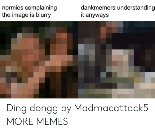 Ding: normies complaining  the image is blurry  dankmemers understanding  it anyways Ding dongg by Madmacattack5 MORE MEMES