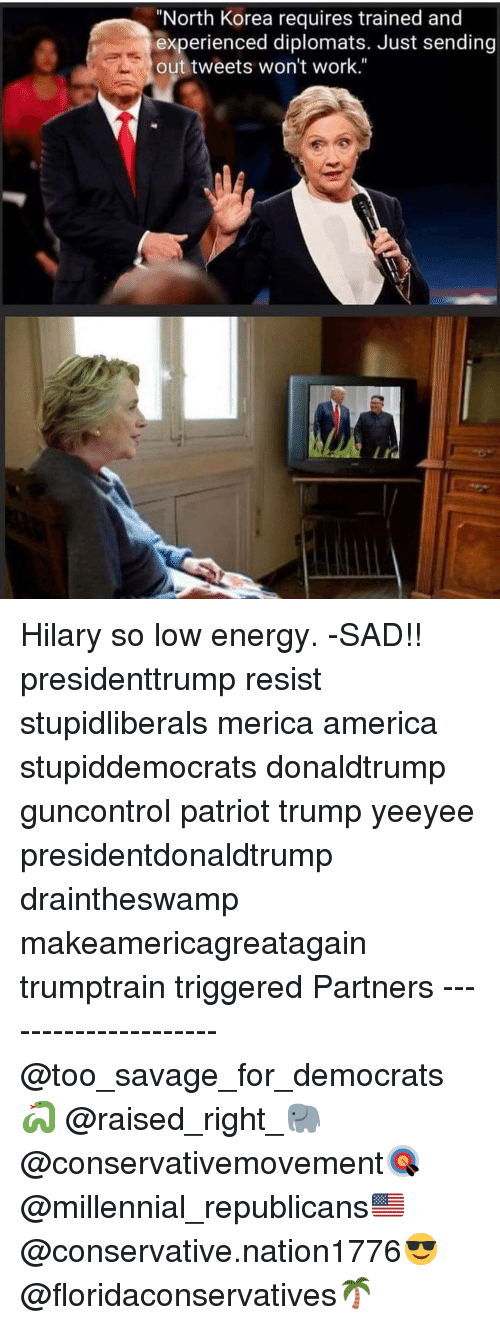 "America, Energy, and Memes: ""North Korea requires trained and  experienced diplomats. Just sending  out tweets won't work."" Hilary so low energy. -SAD!! presidenttrump resist stupidliberals merica america stupiddemocrats donaldtrump guncontrol patriot trump yeeyee presidentdonaldtrump draintheswamp makeamericagreatagain trumptrain triggered Partners --------------------- @too_savage_for_democrats🐍 @raised_right_🐘 @conservativemovement🎯 @millennial_republicans🇺🇸 @conservative.nation1776😎 @floridaconservatives🌴"
