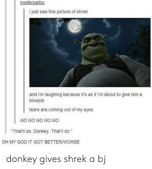 "A Blowjob: nosferpatbu  i just saw this picture of shrek  and i'm laughing because it's as if i'm about to give him a  blowjob  tears are coming out of my eyes  NO NO NO NO NO  ""That'll do, Donkey. That'll do.  OH MY GOD IT GOT BETTERWORSE donkey gives shrek a bj"