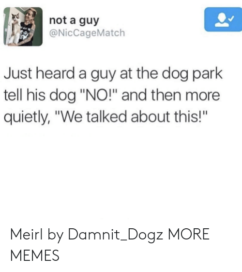 """Dank, Memes, and Target: not a guy  @NicCageMatch  Just heard a guy at the dog park  tell his dog """"NO!"""" and then more  quietly, """"We talked about this!""""  BA Meirl by Damnit_Dogz MORE MEMES"""