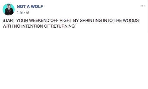 sprinting: NOT A WOLF  1 hr  START YOUR WEEKEND OFF RIGHT BY SPRINTING INTO THE WOODS  WITH NO INTENTION OF RETURNING