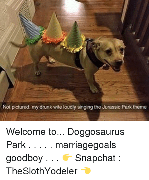 Goodboy: Not pictured: my drunk wife loudly singing the Jurassic Park theme Welcome to... Doggosaurus Park . . . . . marriagegoals goodboy . . . 👉 Snapchat : TheSlothYodeler 👈