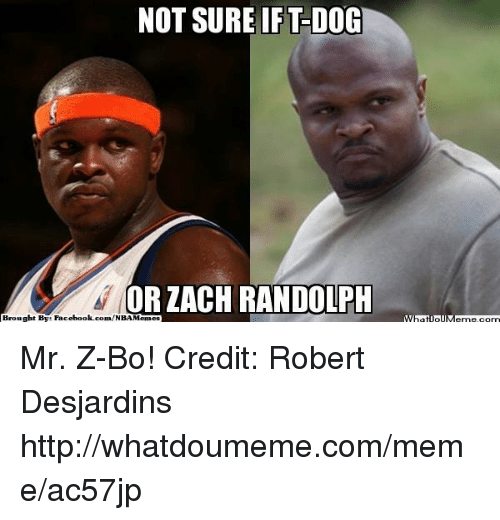 Facebook, Meme, and Nba: NOT SURE IFT-DO  OR ZACH RANDOLPH  Brought By Facebook.com/NBAMemes Mr. Z-Bo! Credit: Robert Desjardins  http://whatdoumeme.com/meme/ac57jp