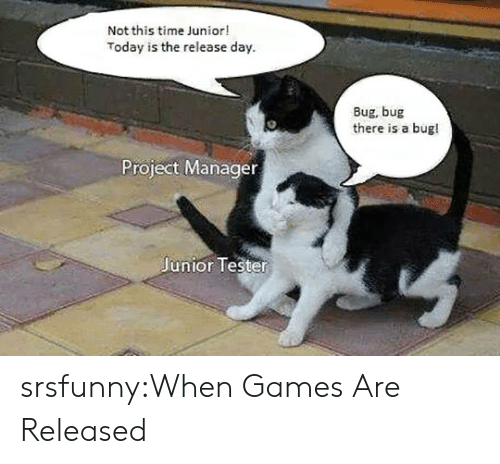 project manager: Not this time Junior!  Today is the release day  Bug, bug  there is a bug!  Project Manager  Junior Tester srsfunny:When Games Are Released