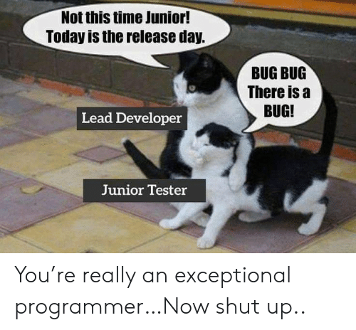 junior: Not this time Junior!  Today is the release day.  BUG BUG  There is a  BUG!  Lead Developer  Junior Tester You're really an exceptional programmer…Now shut up..